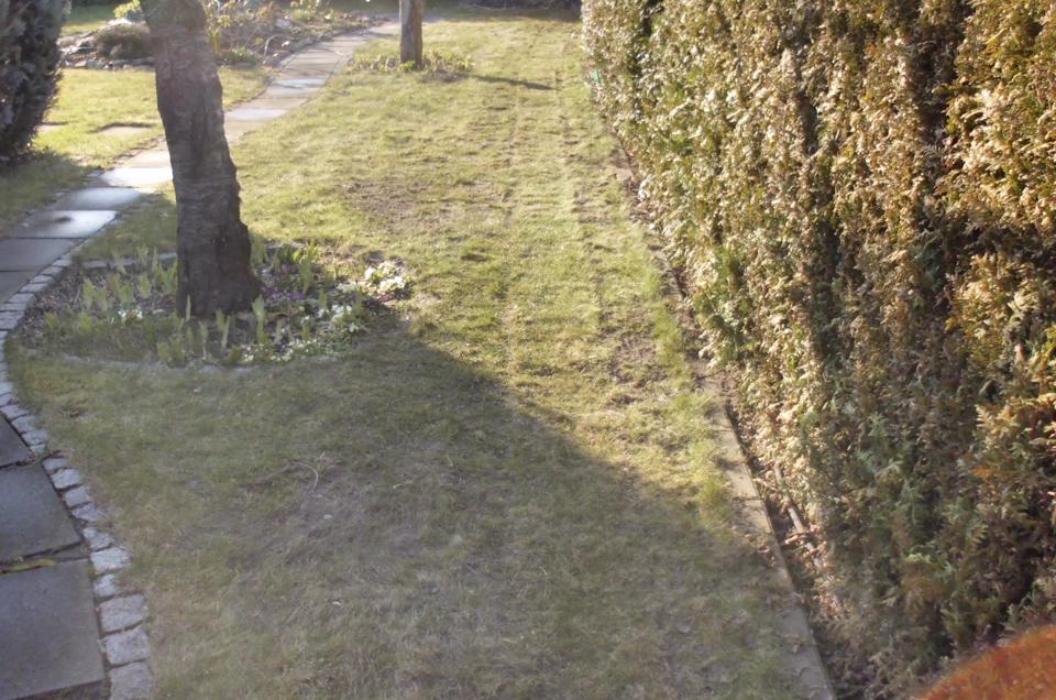 Getrennte Rasenfläche